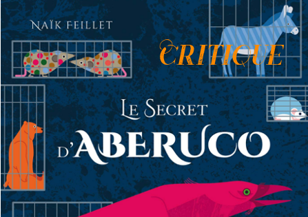 Critique : Le Secret d'Aberuco – Naïk Feillet